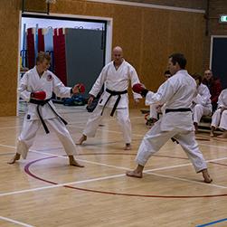 dokan karate proefles