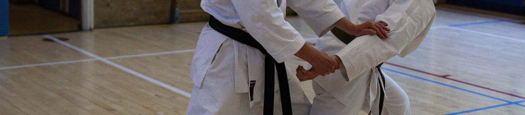 karate dokan handen