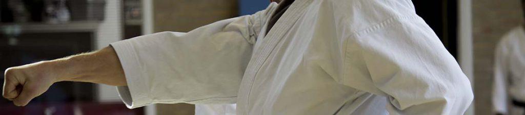 karate dokan oude meesters