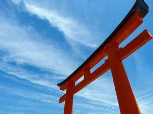 karate dokan torii