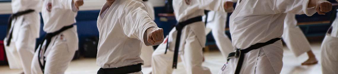 karate dokan vuisten