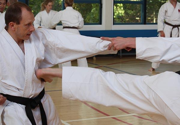 dokan karate andre brockbernd traptechniek