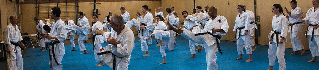 dokan karate danexamens world shotokan ryu
