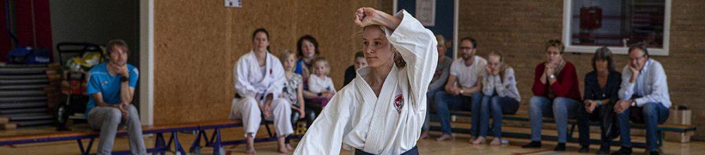dokan karate lotte woitiez