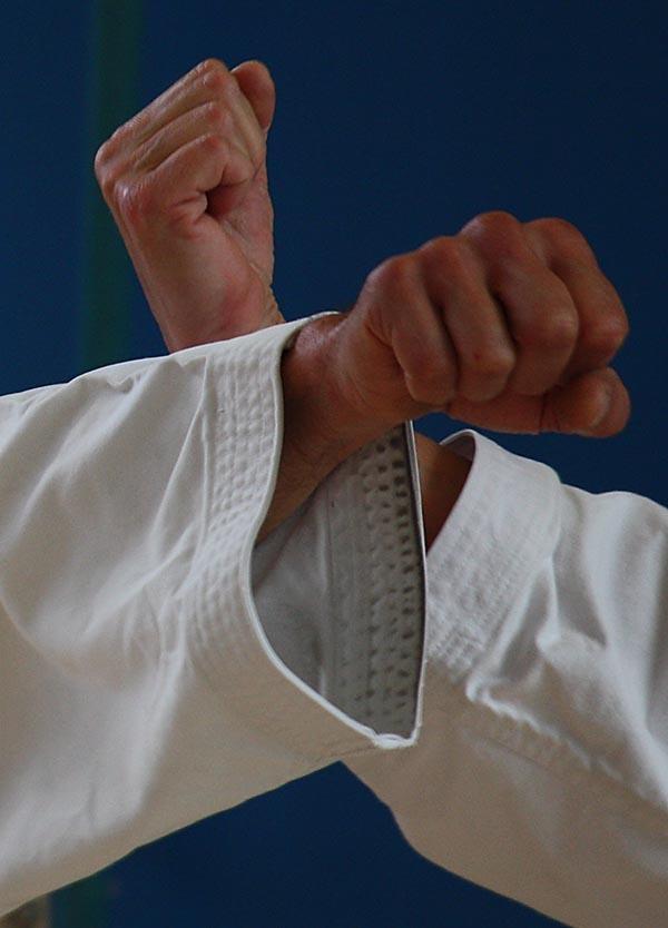 dokan karate vuisten