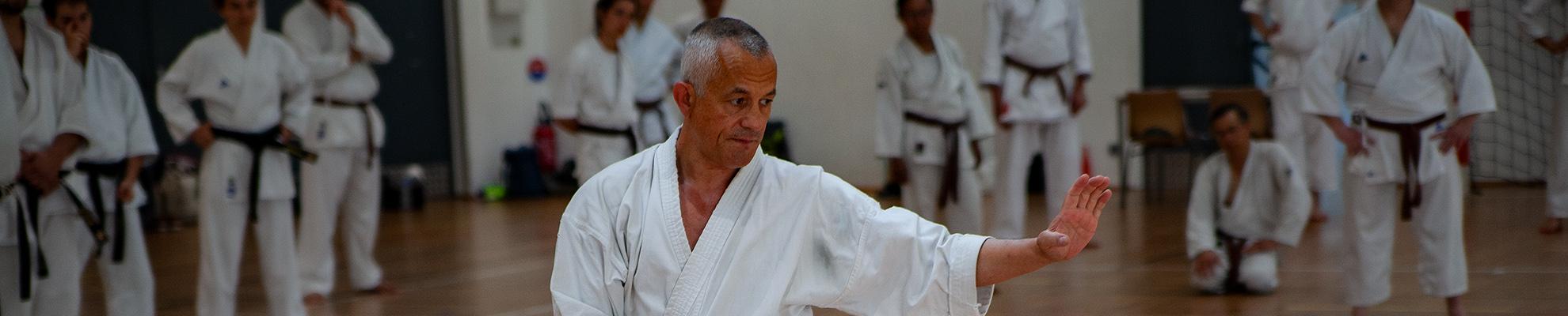 dokan karate nieuws pascal lecourt wijnegen belgie