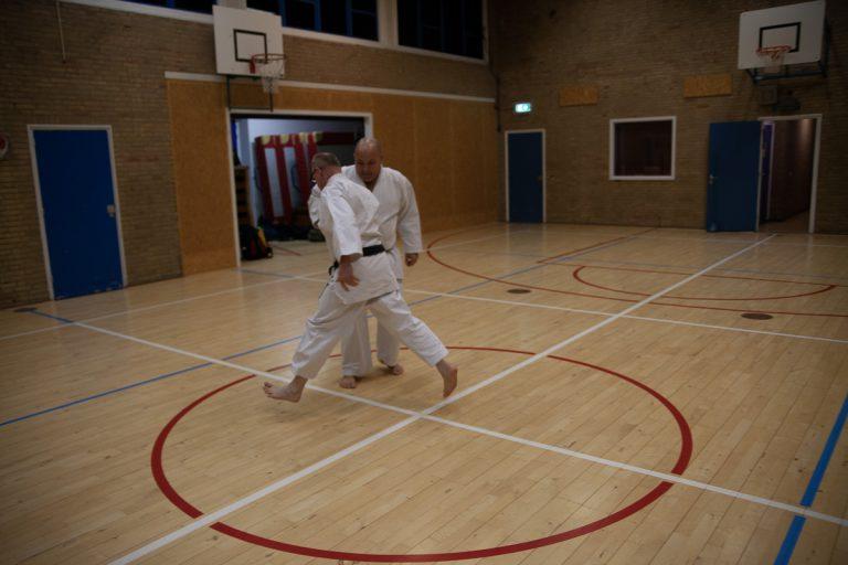 karate dokan ronald van der haak