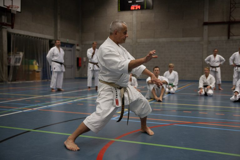 karate dokan pascal lecourt