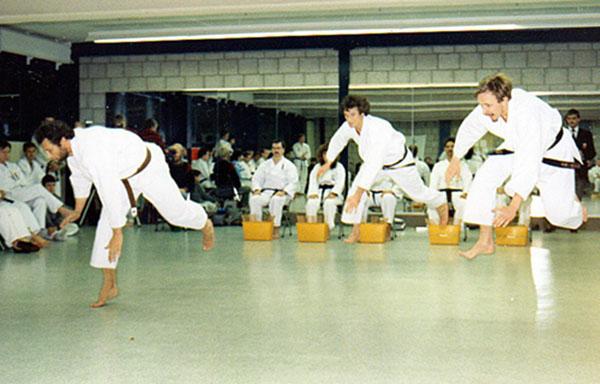 dokan karaten kata team