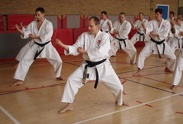 dokan karate stage sensei andre